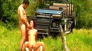 Tasty Safari Dps 1